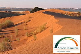 Acacia Namibia, self-drive tours & safaris in Windhoek, Namibia