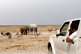 African Profile Self-Drive Safaris and Tours in Windhoek