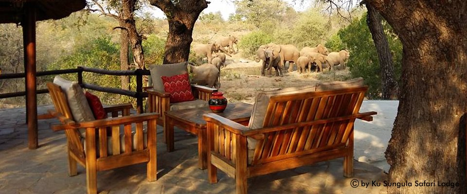 kruger-national-park-lodge-africa-adventure.jpg