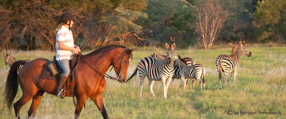 limpopo-horse-riding-safari-africa-adventure.jpg