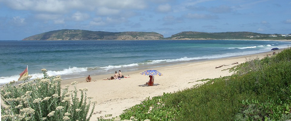 south-africa-plettenberg-bay-africa-adventure.jpg
