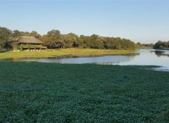River accommodation and events at Antelope Park in Gweru