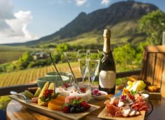 Anywhere in Africa Safaris in the Cape Winelands
