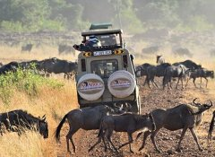 Augustine's Adventure Africa safaris in Tanzania