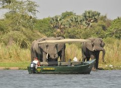 With Biko Adventures Tours in Malawi's Liwonde Game Park