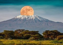 Guided Mount Kilimanjaro trek with Bobby Camping Safaris