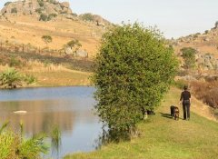 fly fishing dam at Brackenhill Lodge in Mbabane