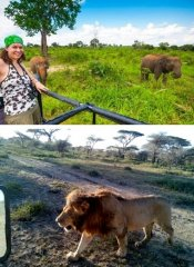 Game drives in Tanzania with Budget Safari from Moshi