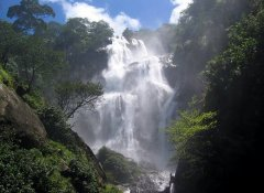 Tanzania's nature on Earthlife Expeditions Limited
