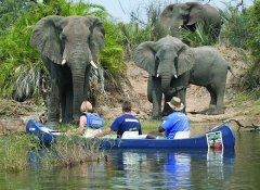 Escape to Adventure Safaris and canoeing on the Zambezi