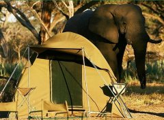 Camping in Botswana with Escape to Adventure Safaris