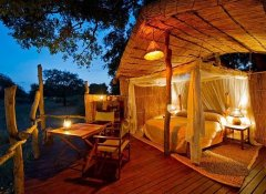 Treehouse at South Luangwa National Park's Flatdogs Camp