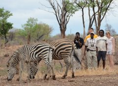 Bush walk with Intondolo Safaris from Victoria Falls