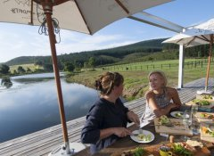 Kay and Monty Vineyards, Wine Farms in Plettenberg Bay