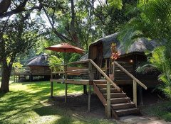 Chalets at Kubu Lodge in Kasane at Chobe National Park