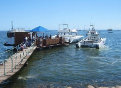 Laramon Tours and boat trips in Walvis Bay in Namibia