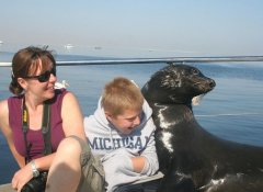 Laramon Tours to the Pelican Point seals in Walvis Bay