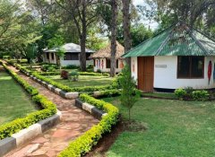 Mwitongo Lodge - guest cottages