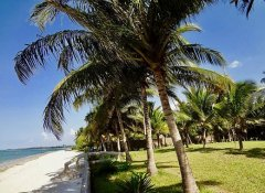 Oceanic Bay Hotel & Resort Accommodation in Bagamoyo