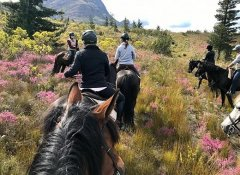 Perdepoort Horse Trails and horse riding in Wilderness