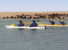 Photo Ventures Namibia, Guided Tours in Walvis Bay