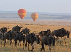 Serengeti Balloon safari with Regional Tours & Safaris