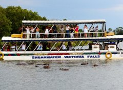 Boat cruise with Shearwater Victoria Falls