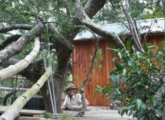 Treehouse lodging or camping on 3 Sisters Horse Trails