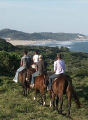 Horseback riding with sea view on 3 Sisters Horse Trails