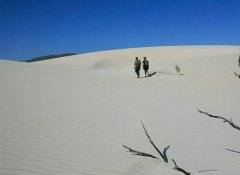 Coastal hikes in the Overberg on The Fynbos Trail