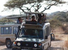 On Safari with The Vijiji Center Lodge