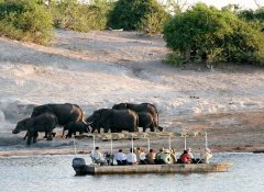 Tilodi Safari Lodge, Accommodation in Kasane, Botswana