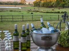 Under Oaks, Accommodation in Paarl, Cape Winelands