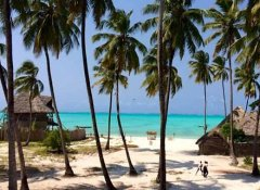 Volunteer Encounter of Zanzibar's nature in Tanzania