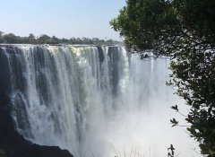 At Victoria Falls on Wild Dog Safaris in Zimbabwe