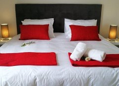 Double room at the Cape Wineland Suites in Wellington