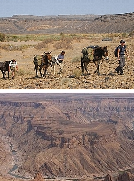 Mule Trekking at the Fishriver Canyon, Namibia